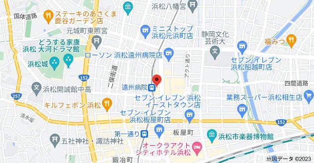 〒430-0916 静岡県浜松市中区早馬町2−1の地図